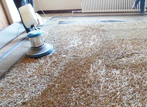 云南山猫直播山猫直播公司——地毯清洗1